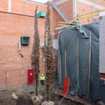 bomen-aanplanten-bestrating-06